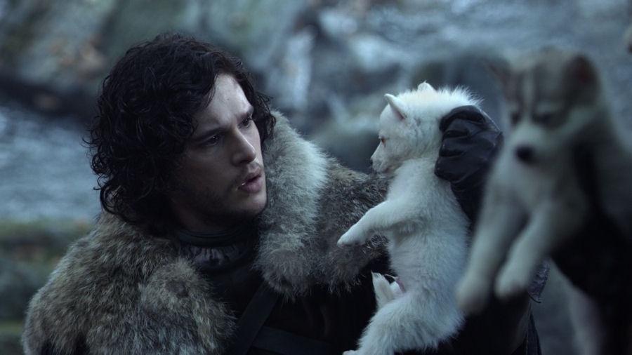 Cultura Geek Game of Thrones Direwolves 1