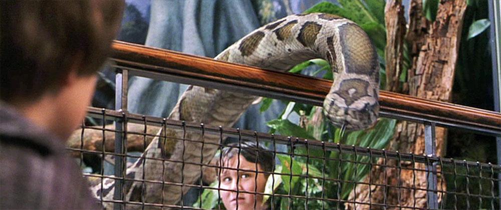 Animales Fantásticos - www.culturageek.com.ar