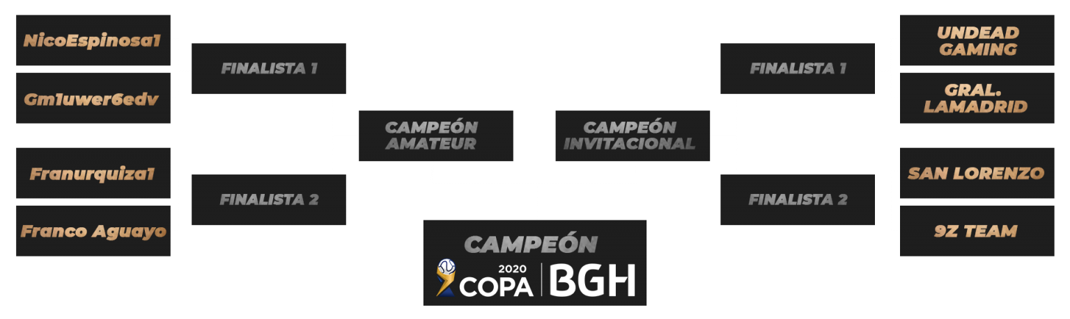 llave final Copa BGH