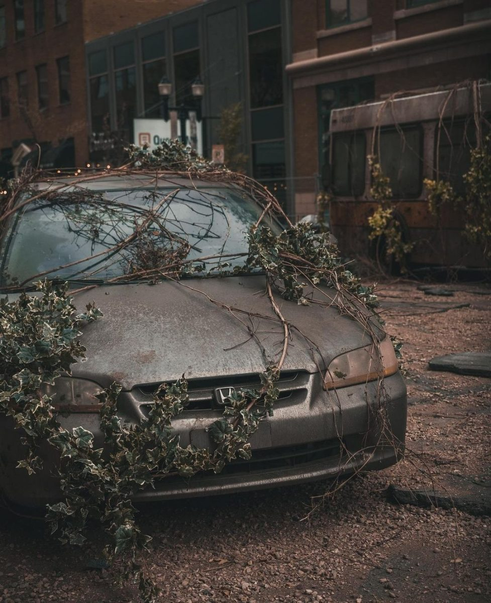 The Last of Us imágenes set